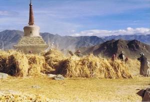 Tibet_Ganden_1999_Img0005