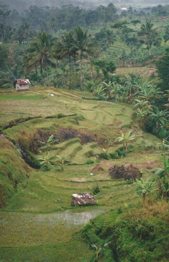 Indonesie_Baturaden_2003_Img0001