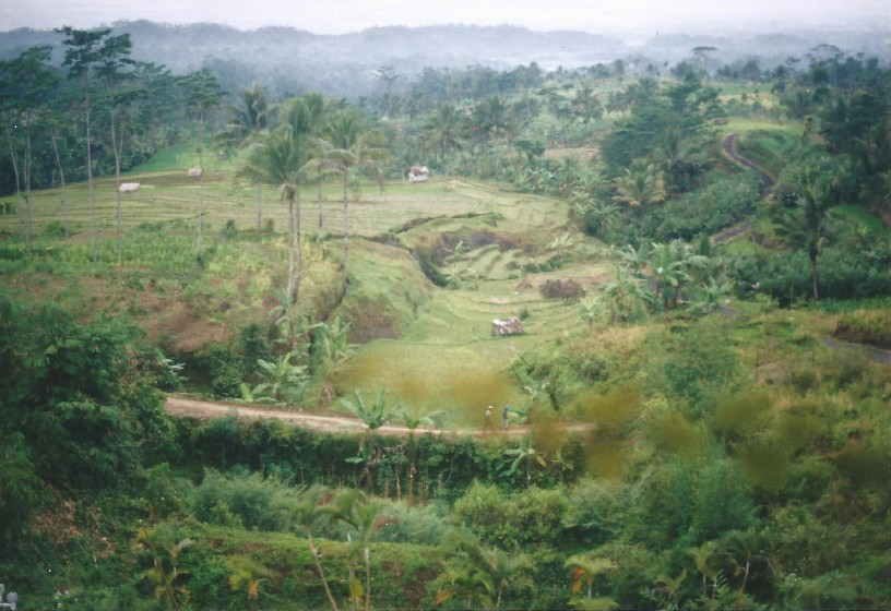 Indonesie_Baturaden_2003_Img0006