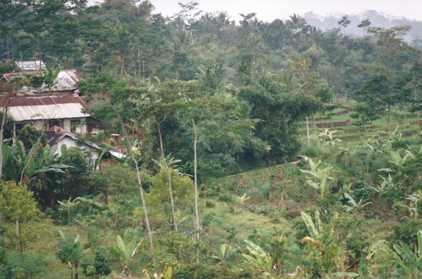 Indonesie_Baturaden_2003_Img0008