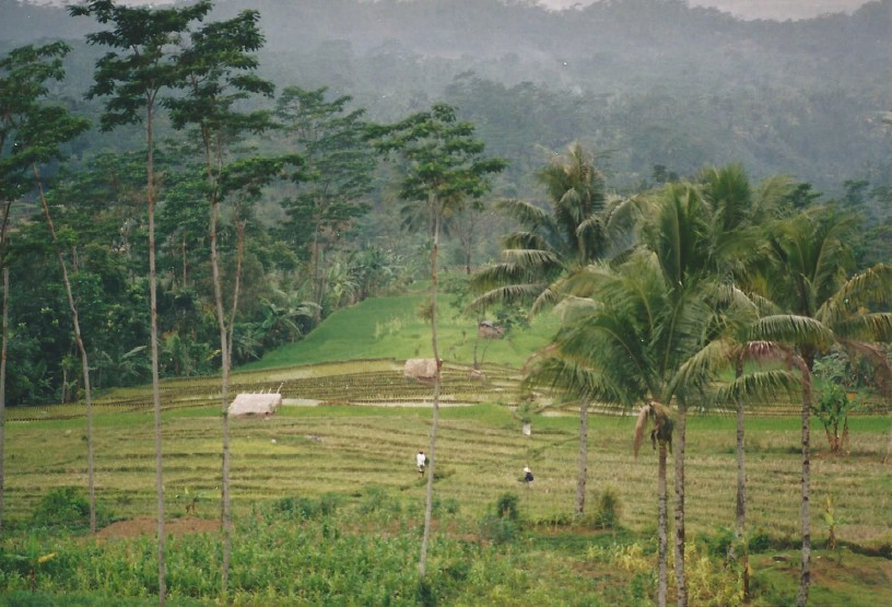 Indonesie_Baturaden_2003_Img0009