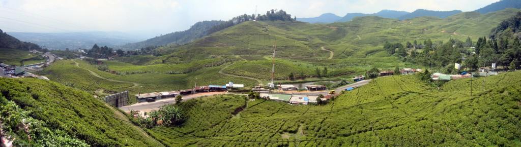 Uitzicht richting Bogor