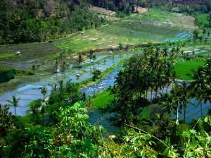 Indonesie_Noord Midden Bali_2003_Img00019b