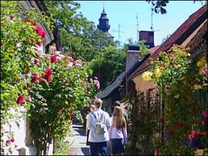Rozestruiken in Visby...