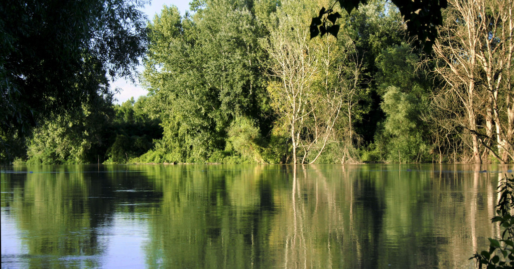 Tisza_River_floods,_in_July