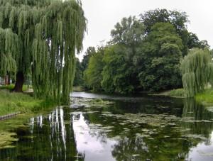 Oude Plantsoen of Rijsterborgherpark te Deventer...