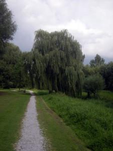 Bergerpark in noordelijke richting...