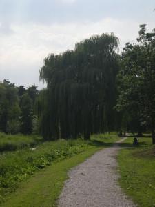 Bergerpark in zuidelijke richting...