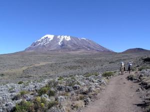 Kilimanjaro...