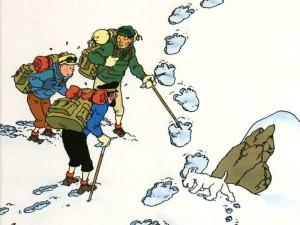 Tintin_01