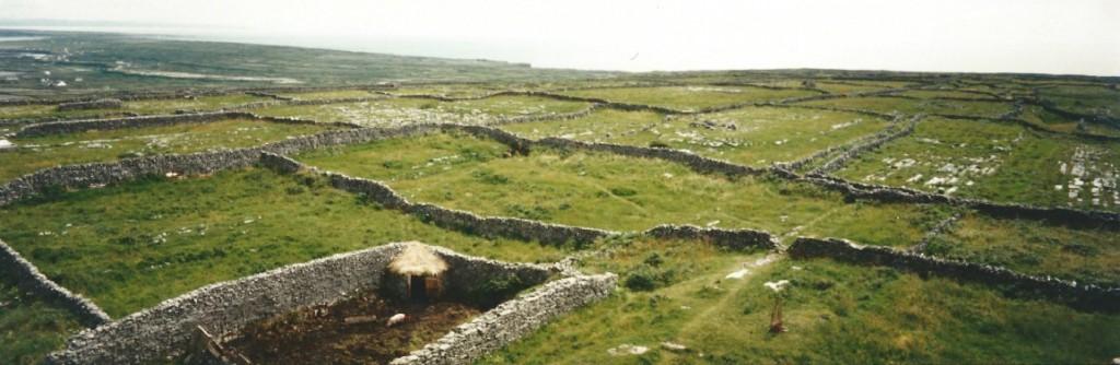 Dry stone walls of Aran...