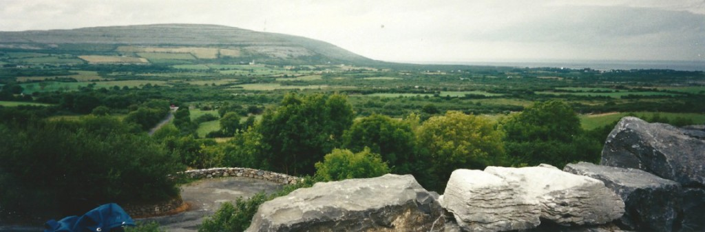 Some parts of The Burren are more green than others...