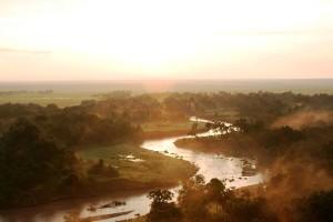 1024px-Serengeti_-_Stefan_Swanepoel_