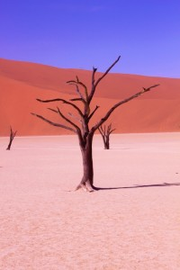 Photogenic and ultimately unique Deadvlei...
