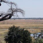 botswana_choberivercruise_2015_img0004